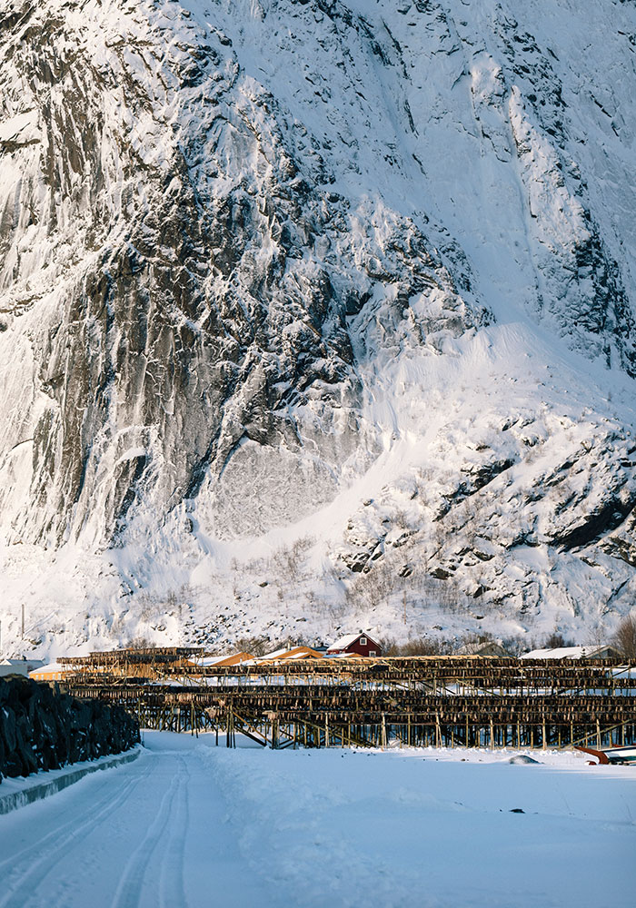 Shooting Fotografico Norvegia Tagliapietra Dry Studio