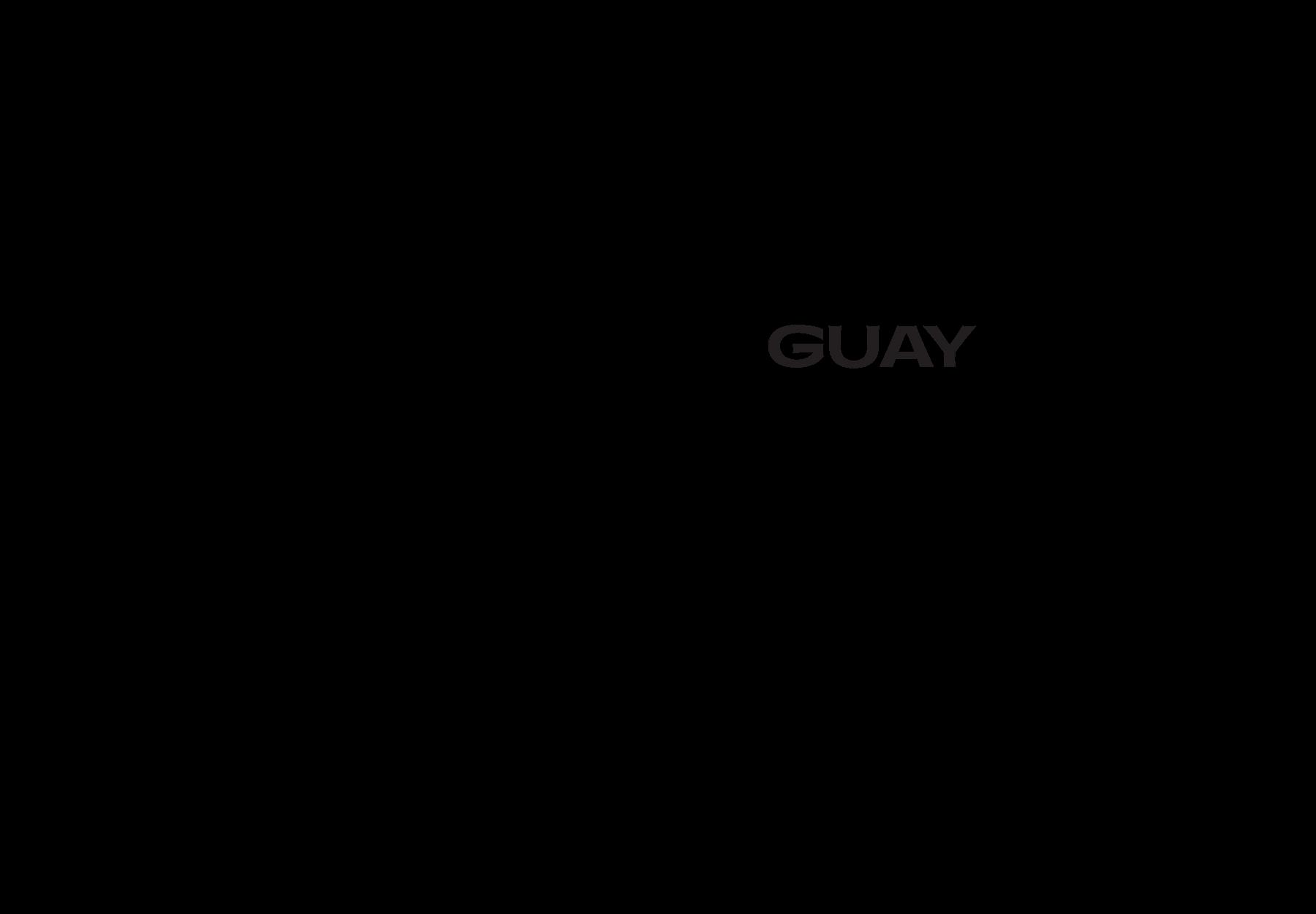 Kombucha logo design - DryStudio